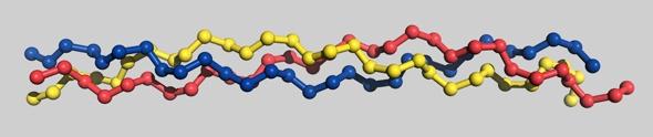 Protéine de collagène