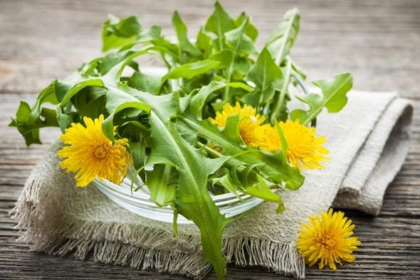 Fleurs de pissenlit et verts sur une table en bois