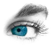 Oeil sur fond blanc