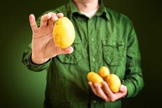 Agriculteur tenant des pommes de terre