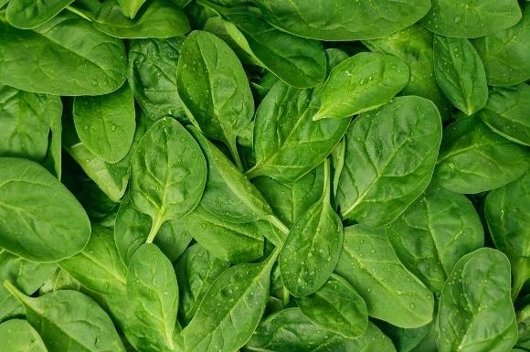 Image entière de feuilles d'épinards frais