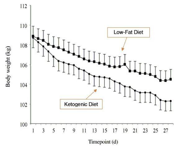 Graphique 1 Perte de graisse