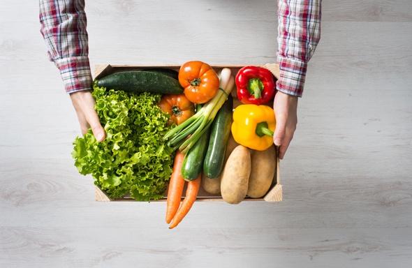 Mains tenant une boîte de légumes