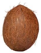 Noix de coco entiere